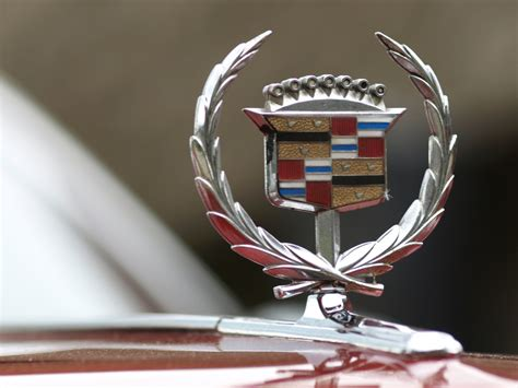 theft alert   eye   vehicle emblems  hood ornaments  news wheel