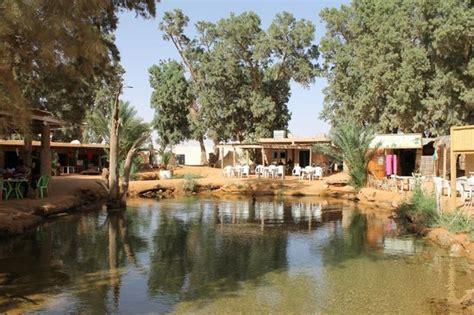 oasis photo de circuit 4x4 la saharienne midoun tripadvisor