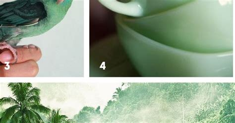 greyed jade behr paint color story the sweet escape