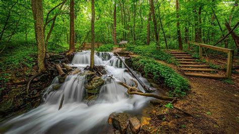 stairs forest waterfall beautiful views wallpapers