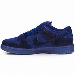 Nike Dunk Low Premium SB Shoes