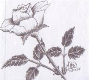 Love Drawings Easy to Draw Roses