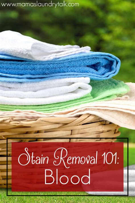 Removing Blood Stains From Upholstery by How To Remove Blood From Fabric S Laundry Talk