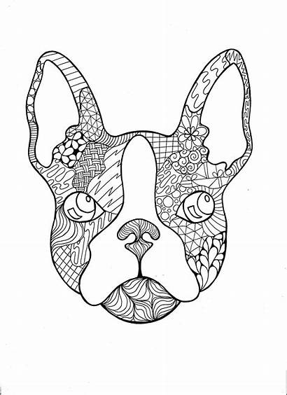 Bulldog Coloring French Pages Pdf Zentangle Frenchie