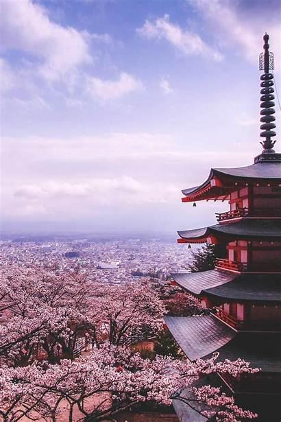 Sakura Japanese Pink Wallpapers Wallpaperaccess Backgrounds