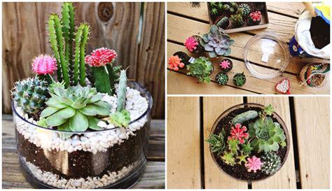 แบ่งปันไอเดีย DIY 'สวนแคคตัสในโหลแก้ว' จัดสวนเล็กๆ สุดชิค ตามแบบฉบับฮิปสเตอร์ | NaiBann.com