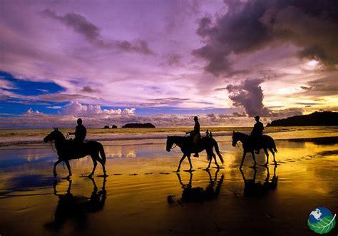 manuel antonio horseback riding costa rica sunset horse tours toucan resort valley