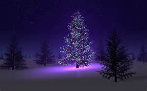 22 beautiful tree wallpapers merry