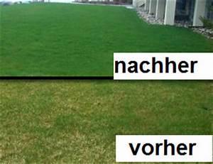 Wann Mäht Man Rasen : wann sollte man rasen m hen rasen pflanzen und kr uter pflege bauen und wohnen in der schweiz ~ Markanthonyermac.com Haus und Dekorationen
