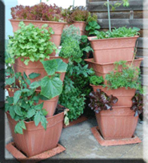 balkon pflanzen töpfe karotten pflanzen balkon balkon tipps zum ernten auf dem eigenen balkon living at home