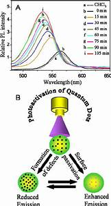 Semiconductor Quantum Dots And Metal Nanoparticles