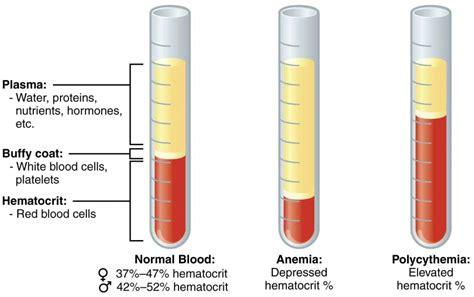 packed cell volume pcv  hematocrit