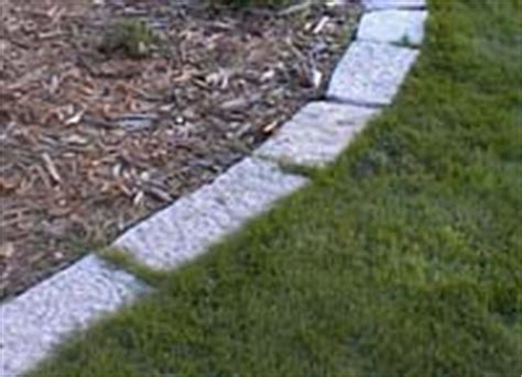 Edge Your Planting Beds