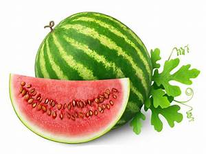 water melon fruit powder/vigorous-tech