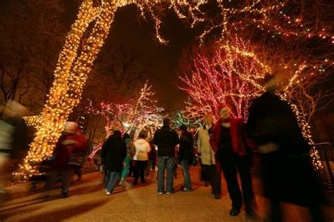 lincoln park zoolights adds skating this winter in
