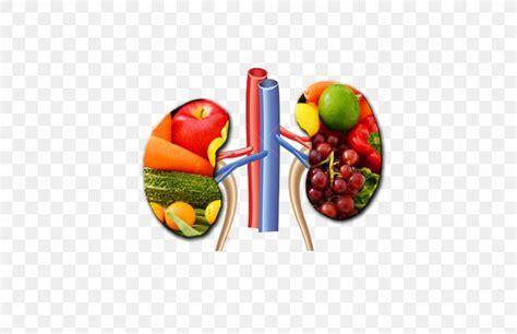 chronic kidney disease kidney failure hemodialysis health