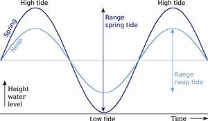 Explain State What Causes Tides On Earth