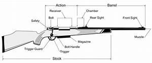 Safe Firearm Handling