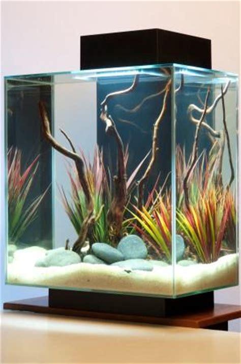 Amazon.com : Fluval Edge 6-Gallon Aquarium with 21-LED