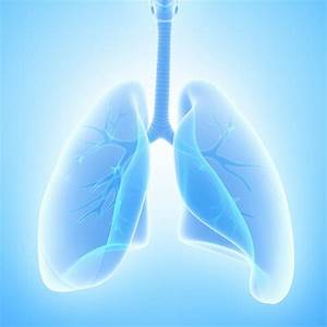 Hiv And Your Lungs