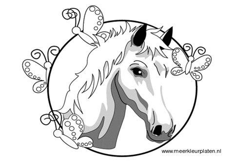 Kleurplaat Mandela Paarden by Meer Kleurplaten Paarden Paard Ingelijst Kleurplaten