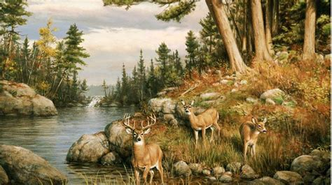 Animal Mural Wallpaper - wall mural deer wall murals are all to go on for