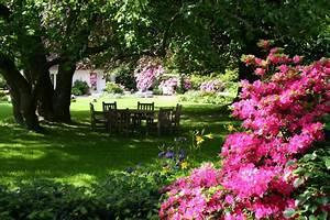 Gartengestaltung Unter Bäumen : westliches feng shui zinsser gartengestaltung schwimmteiche und swimmingpools ~ Yasmunasinghe.com Haus und Dekorationen