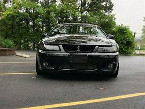2003 Ford Mustang 2003 Ford Mustang SVT Cobra Black for sale craigslist – Used Cars for Sale
