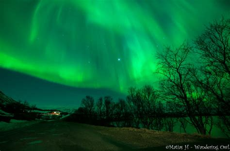 tromso norway northern lights tour fjellheisen lonely planet