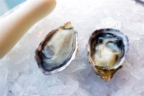oysters kusshi santa monica seafood