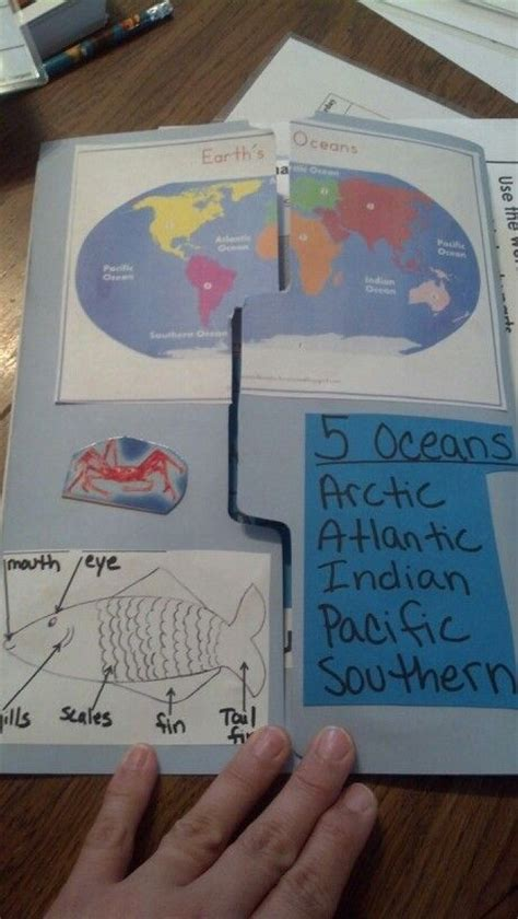 100 best homeschool marine oceans on unit printables and day