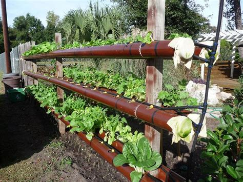 Vertical Garden Pipe by Gardening In 4 Quot Pvc Pipe