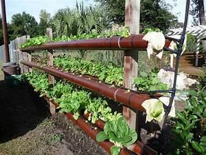 Erdbeeren Im Rohr Bauanleitung : wonderful diy vertical pvc planter ~ Orissabook.com Haus und Dekorationen