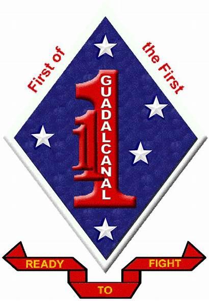 Marines 1st Battalion Usmc Marine Regiment Vietnam