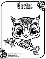 Coloring Owl Cuties Pages Owls Creative sketch template