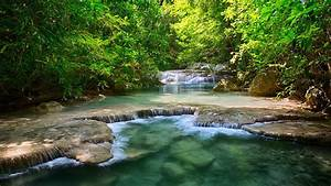 Mountain river with small rapids HD Desktop Wallpaper | HD ...