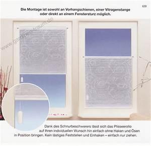 Plissee Mit Motiv : plisseerollos einfarbig plissee rollo plissee rollos ~ Frokenaadalensverden.com Haus und Dekorationen