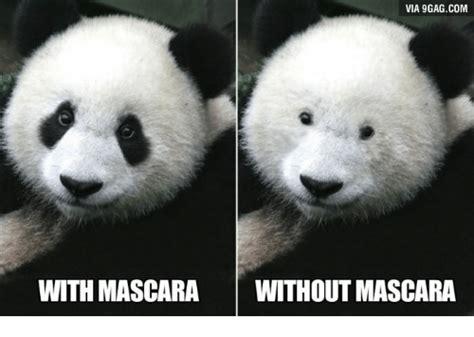 Panda Mascara Meme - via 9gagcom with mascara without mascara mascara meme on sizzle
