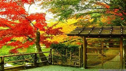 Autumn Japan Wallpapers Frankenstein Crazy Scene Res