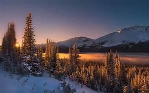 Nature, Landscape, Winter, Sunrise, Mist, Mountains, Forest, Snow, Trees, Morning, Sunlight