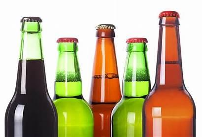 Beer Bottle Bottles Clipart Craft Clip Beers