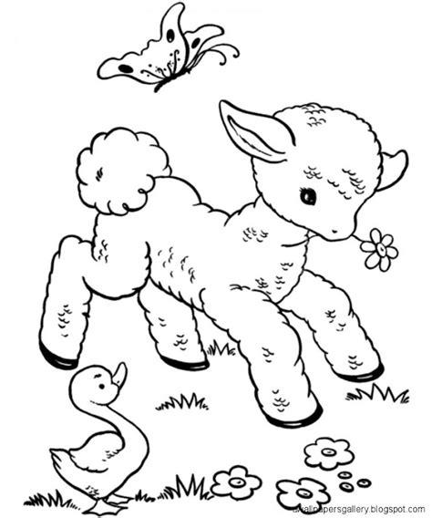 baby animal drawings  kids wallpapers gallery