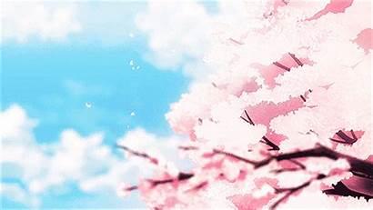 Magic Irregular Cherry Anime Blossom Sakura Mahouka
