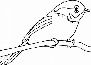 Bird Coloring Pages - Dr. Odd