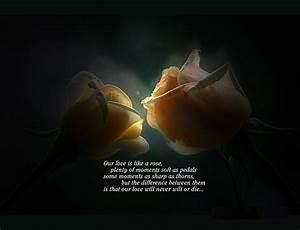 U Me Aur Hum: Sweet Love Quotes Wallpapers