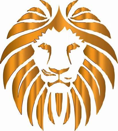 Lion Background Clipart Golden Cliparts Transparent Head