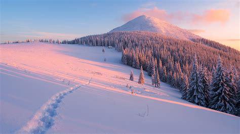 ordinateur bureau hiver pente arbres neige montagnes rayons du soleil