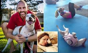 Watch the exercise loving staffy who copies his owner's ...