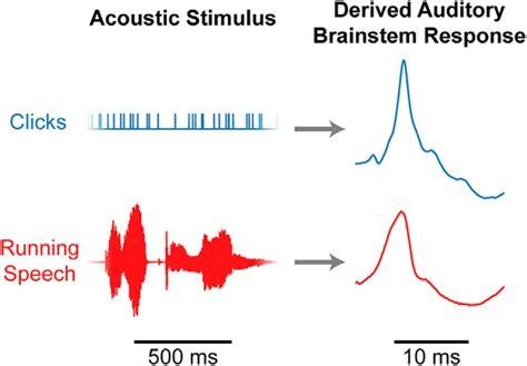 auditory brainstem responses  continuous natural speech  human listeners eneuro