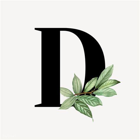 premium illustration  botanical capital letter  illustration lettering alphabet